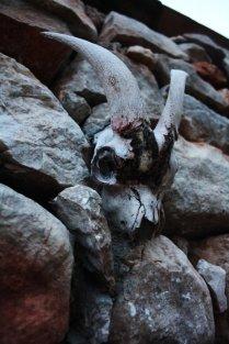 Grotta Mangiapane a Custonaci