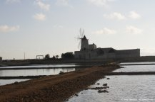 salt pans in Trapani with windmill