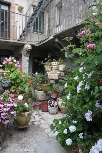 Blooming courtyard in Erice