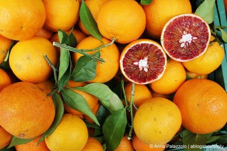 sicilian red oranges at salemi sicily
